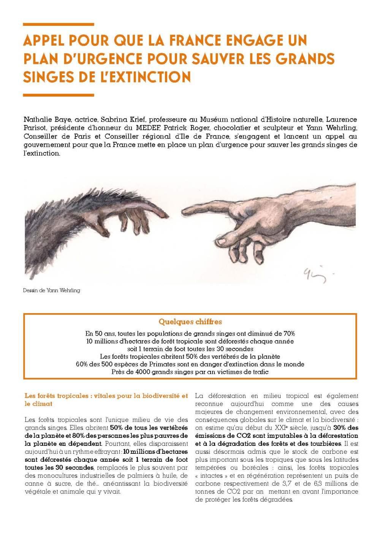 cp-grands-singes-v3_Page_1