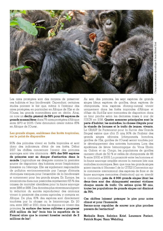 cp-grands-singes-v3_Page_2